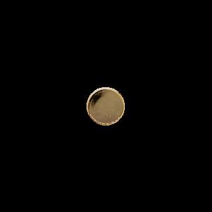 Хольнитен круглый 49034 д 10мм золото